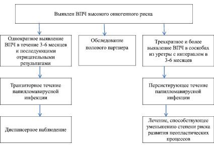 Схема лечения впч у мужчин - Jks-k.ru